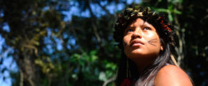 Viveiros de Castro: l'offensiva finale contro gli indios