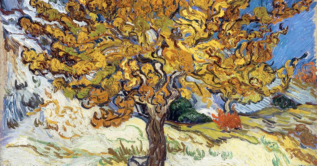 Vincent van Gogh, Gelso, 1889, olio su tela, Norton Simon Museum, Pasadena.